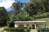 Reserva silvestre produce café amigable con naturaleza