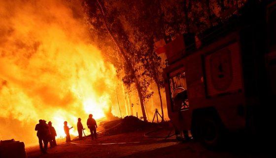 En la extinción de los incendios trabajaron cerca de 1,000 brigadistas nacionales e internacionales, cincuenta aeronaves de Chile y otros países, y unos 15,000 militares y funcionarios de las policías y la Armada. LAPRENSA/EFE