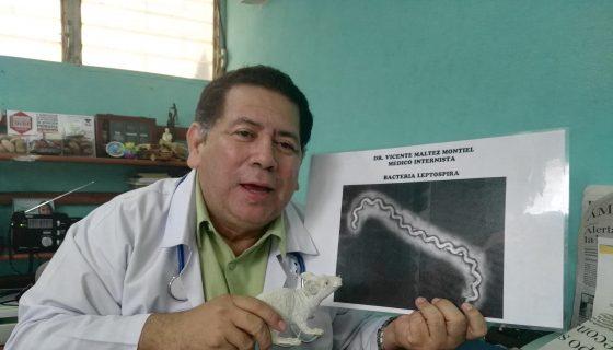 brote de leptospirosis, Minsa, roedores
