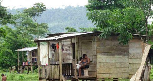 """""""Es tal el temor de los indígenas afectados que han decidido abandonar sus hogares ante la certeza de que serían atacados"""", sostiene Cejudhcan en una carta entregada al nuncio Fortunatus Nwachukwu. LA PRENSA/ARCHIVO"""