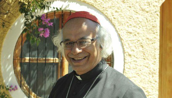 Cardenal Brenes