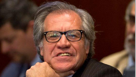 Luis Almagro, OEA, Secretario General OEA