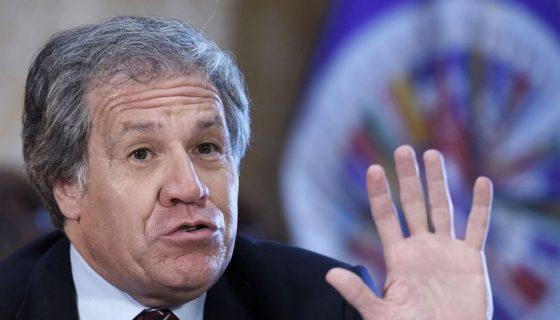 El secretario general de la OEA, Luis Almagro. LA PRENSA/EFE