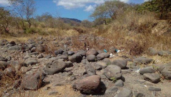 Gran parte del río Estelí luce seca. Donde todavía queda un poco de agua, hay motores para extraerla y utilizarla en el riego de hortalizas. LA PRENSA/R.MORA