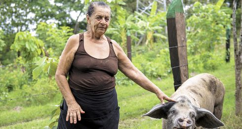 programa hambre cero, Nicaragua, Daniel Ortega, mujeres, préstamos, Plan Techo