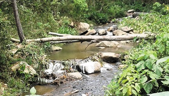 Río Dipilto, Dipilto, Nueva Segovia