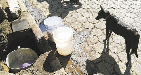 En la comunidad Vista Alegre, al sur de Masaya, las familias hacen hoyos en busca de la tubería para extraer el agua. LA PRENSA/M.ESQUIVEL