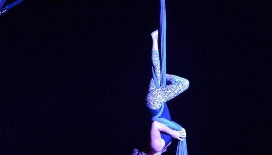 Espectáculo de circo
