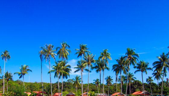 Las aguas cristalinas de Cancún son uno de sus más grandes atractivos. Es clima caribeño en una capital mundial de ambiente festivo. LA PRENSA / Thinkstock.