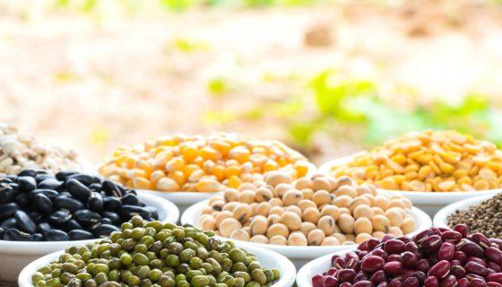 Semillas o granos