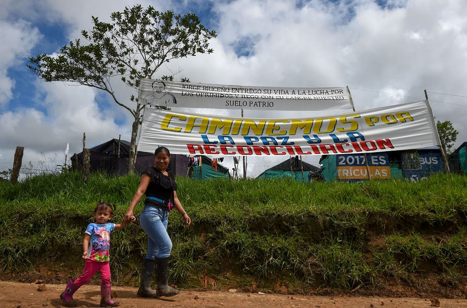 FARC, Colombia, desarme, desarme de las FARC