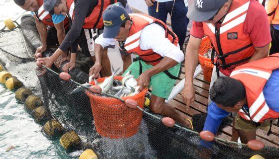 terminal pesquera en Rivas