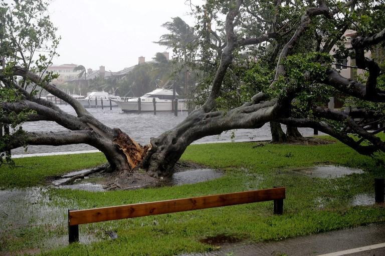 Irma deja sin luz a 20 mil residencias y provoca evacuaciones — Florida